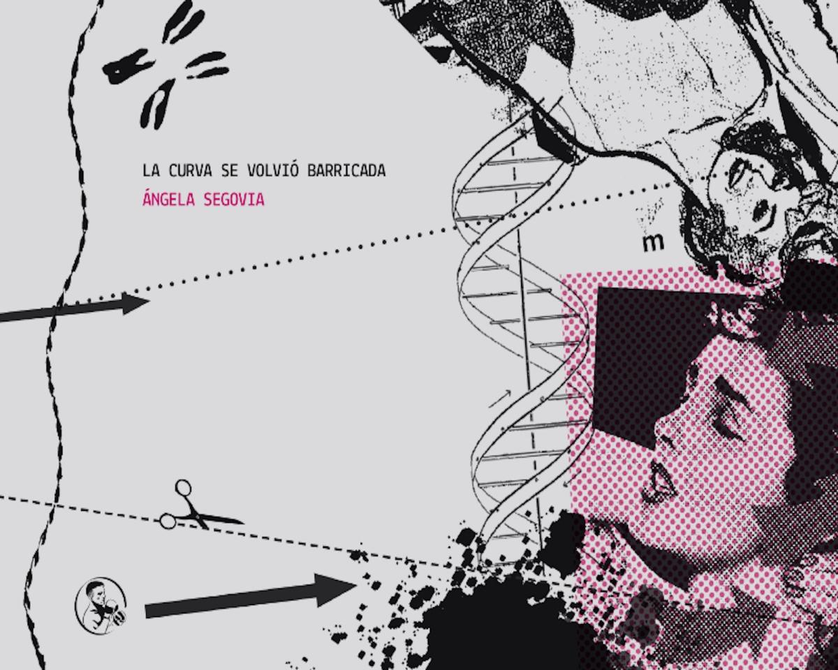 CURVAR LA PODREDUMBRE DEL MUNDO: Acerca de 'La curva se volvió barricada', de Ángela Segovia